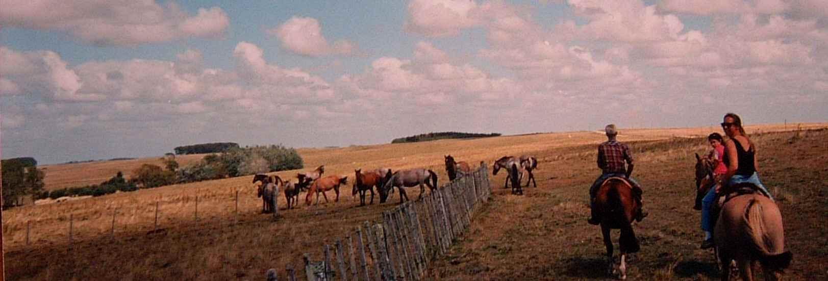 Uruguay guest estancia horse riding