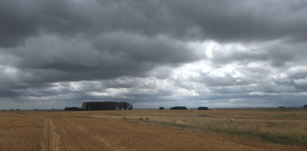 uruguay field