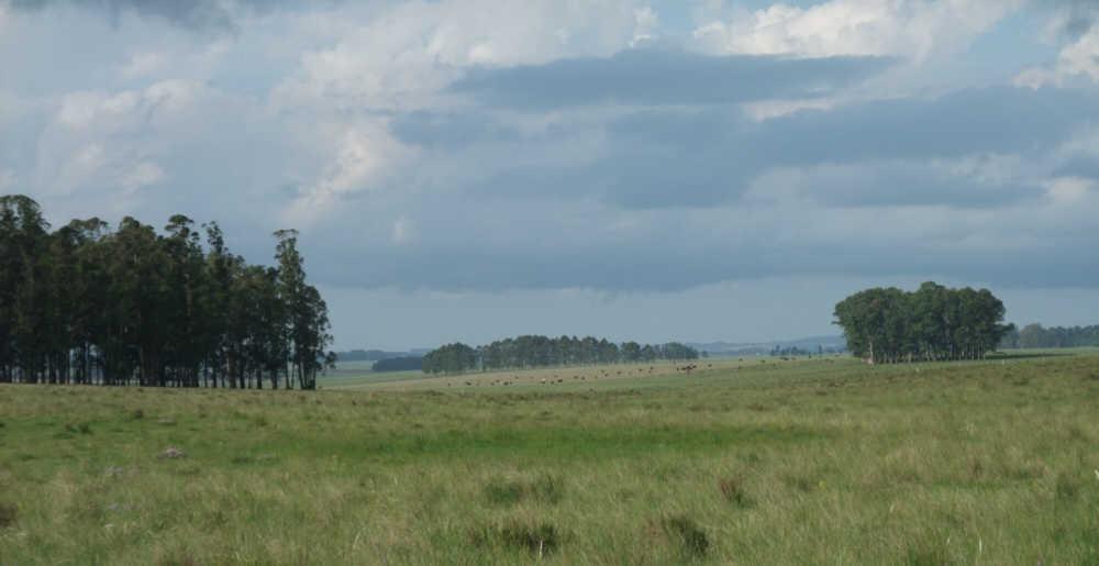 uruguay land